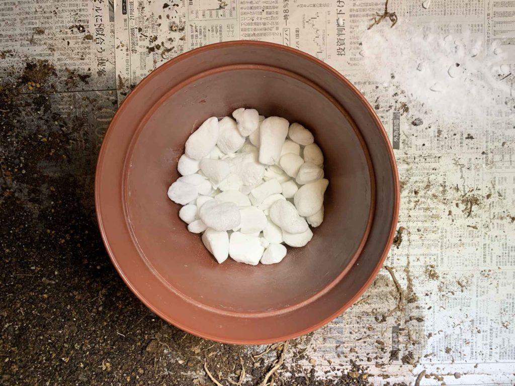 鉢底石を鉢に敷き詰める