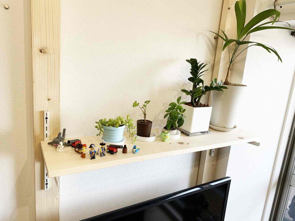 2×4材浮かせるテレビ棚の上段に観葉植物専用棚を設置
