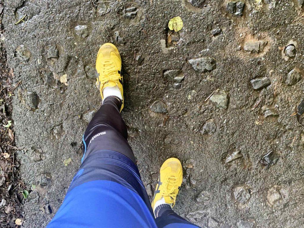 初心者コースを登山する程度なら普段の運動着と運動靴・スニーカーで十分
