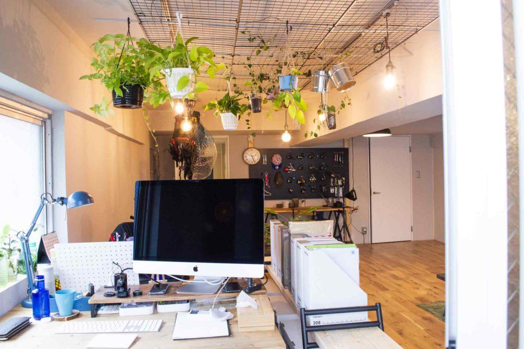 ダクトレールとメッシュパネルを使って天井に吊るした観葉植物