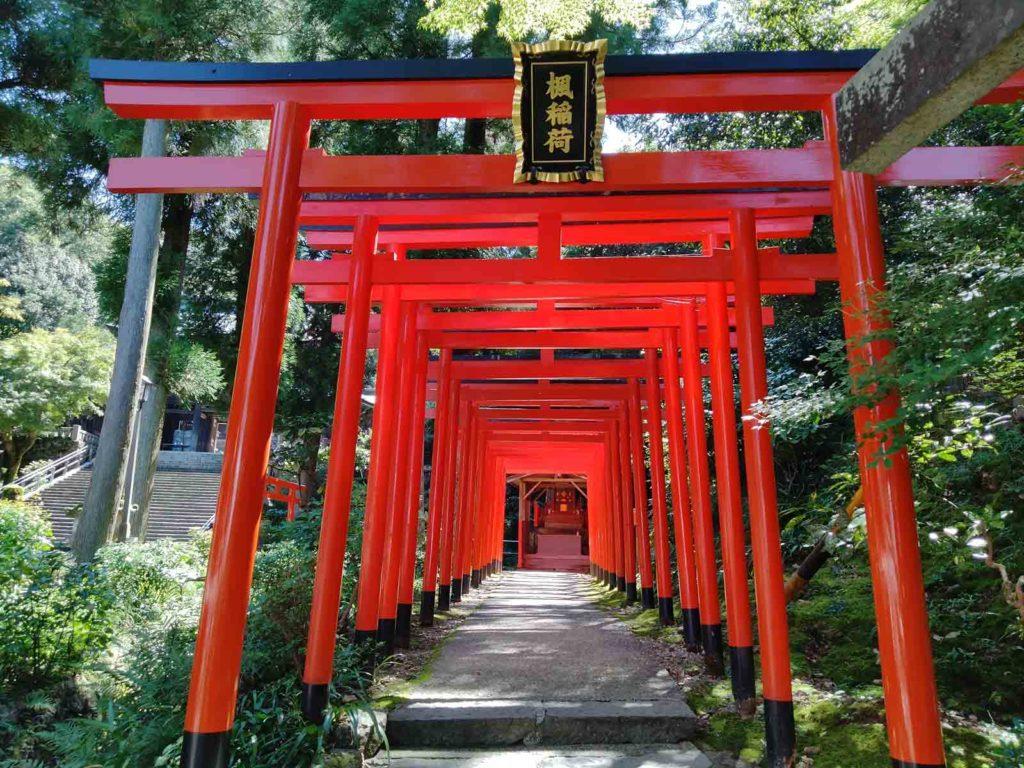 稲荷神社は赤い鳥居が並んでいて素敵