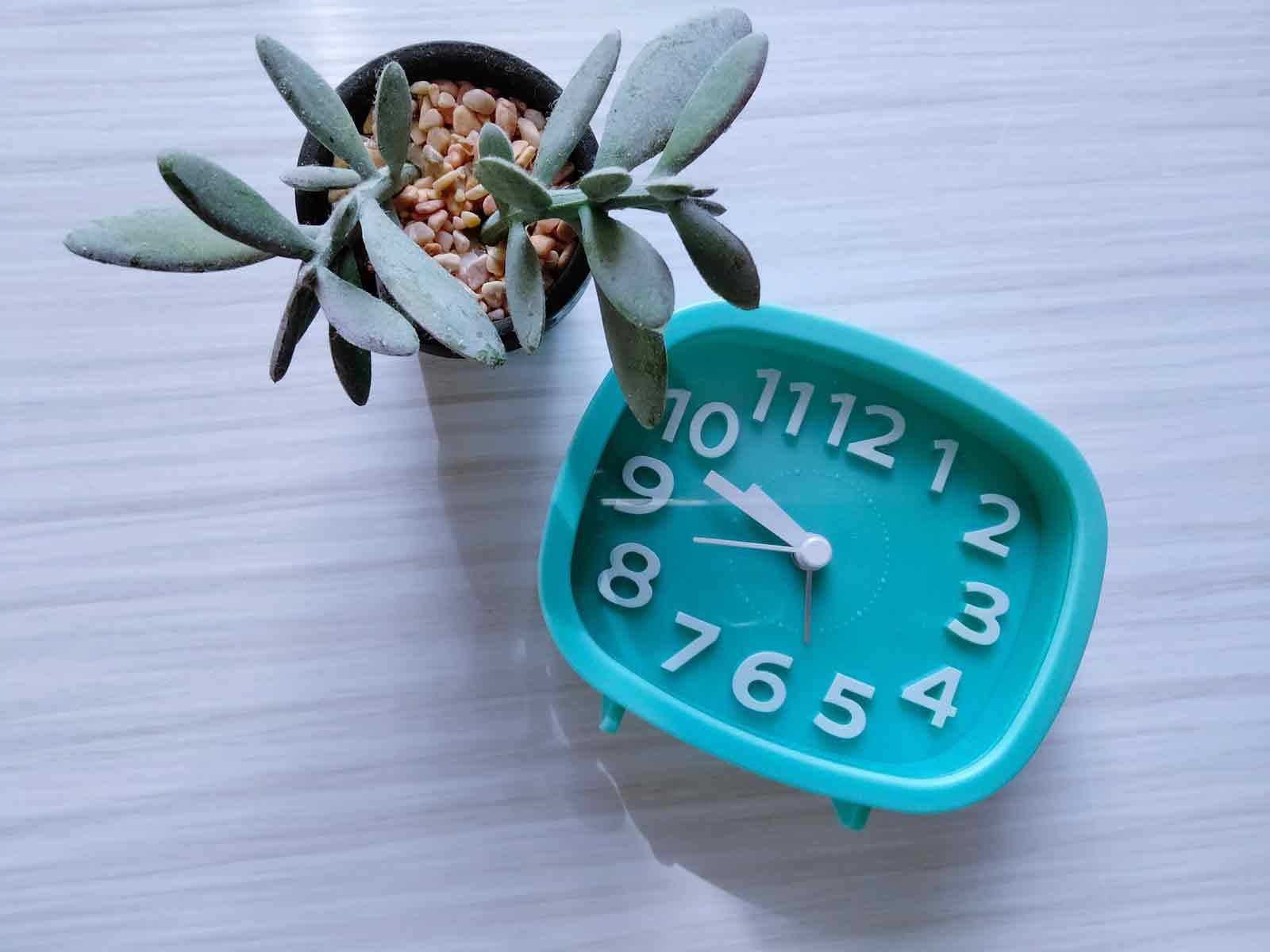 机の上に多肉植物と青色の目覚まし時計が置かれている
